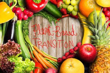 PB Transition